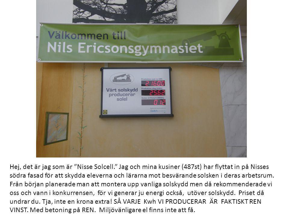 """Hej, det är jag som är """"Nisse Solcell."""" Jag och mina kusiner (487st) har flyttat in på Nisses södra fasad för att skydda eleverna och lärarna mot besv"""