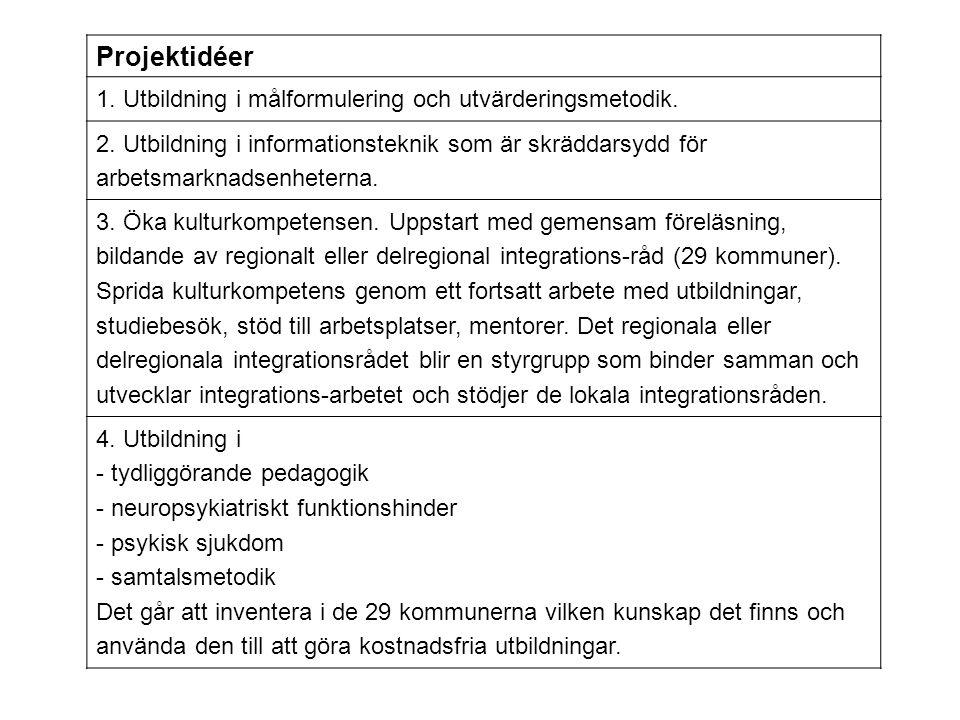 Projektidéer 1. Utbildning i målformulering och utvärderingsmetodik. 2. Utbildning i informationsteknik som är skräddarsydd för arbetsmarknadsenhetern