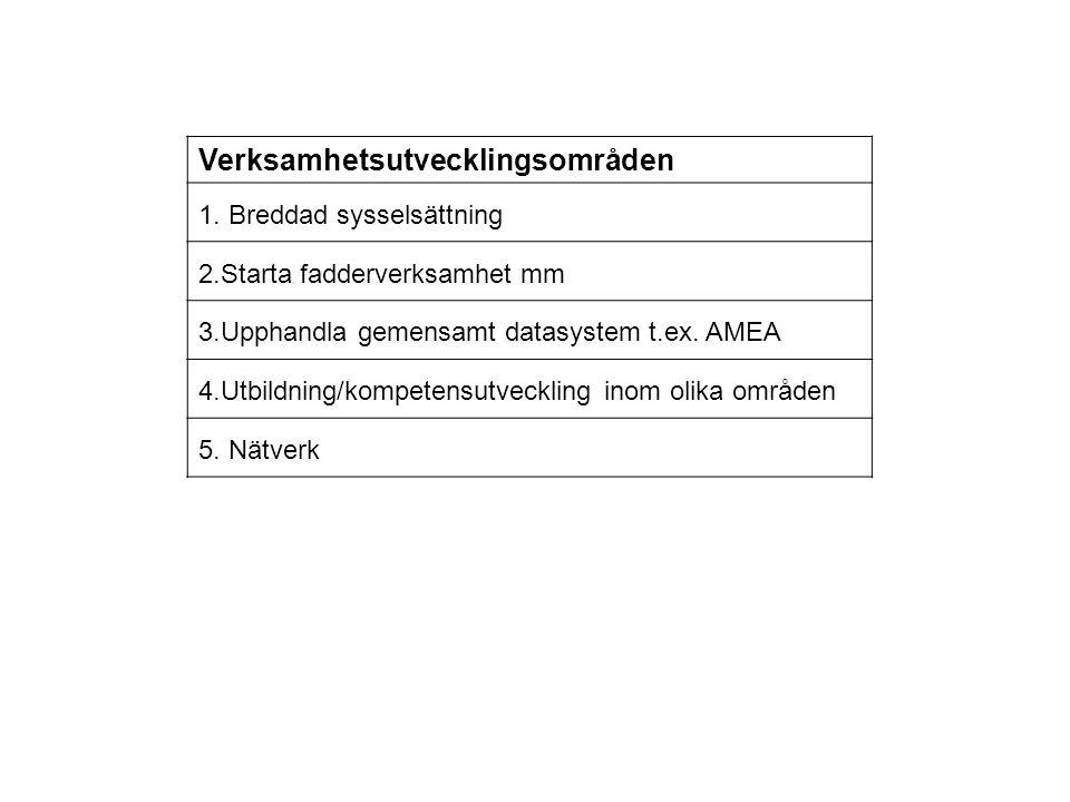 Verksamhetsutvecklingsområden 1. Breddad sysselsättning 2.Starta fadderverksamhet mm 3.Upphandla gemensamt datasystem t.ex. AMEA 4.Utbildning/kompeten