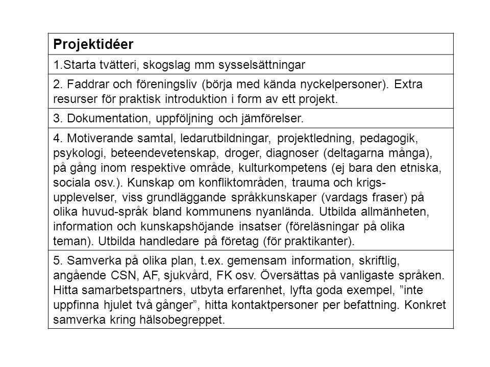 Projektidéer 1.Starta tvätteri, skogslag mm sysselsättningar 2. Faddrar och föreningsliv (börja med kända nyckelpersoner). Extra resurser för praktisk