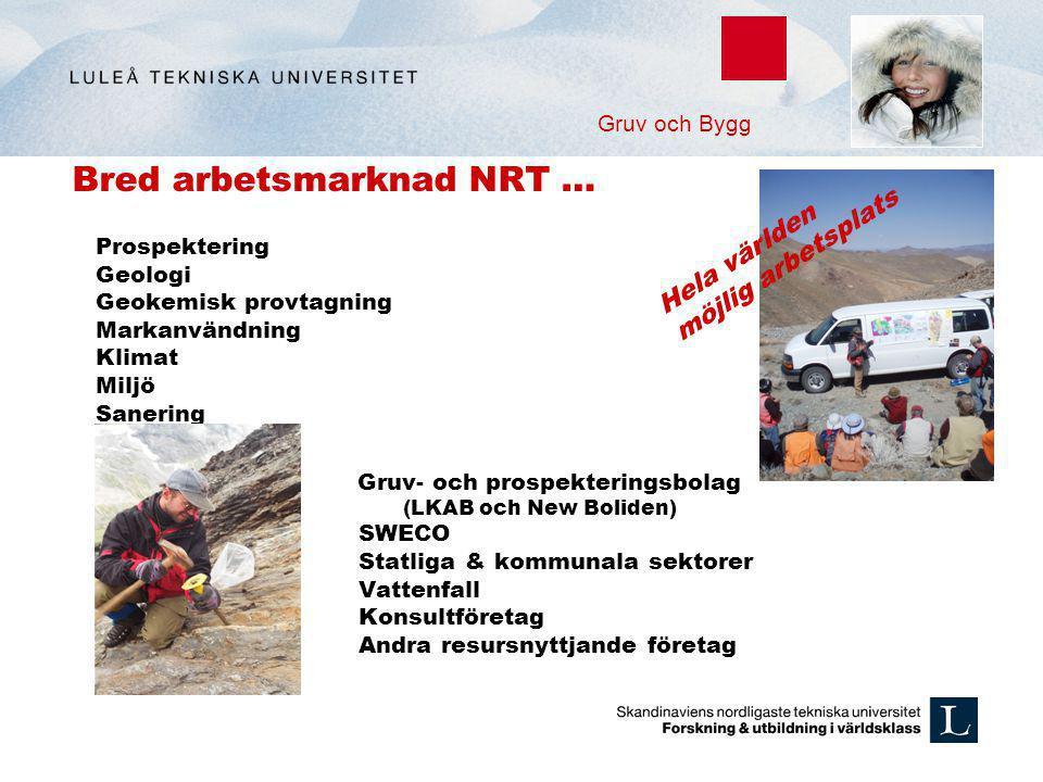 Bred arbetsmarknad NRT … Prospektering Geologi Geokemisk provtagning Markanvändning Klimat Miljö Sanering Gruv- och prospekteringsbolag (LKAB och New