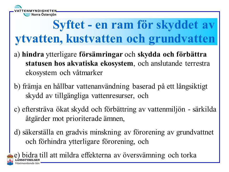 Vattendirektivet i svensk lagstiftning • Utse VM5 kap MB, Länsstyrelseinstruktionen (Riksd, reg) • Bakgr.