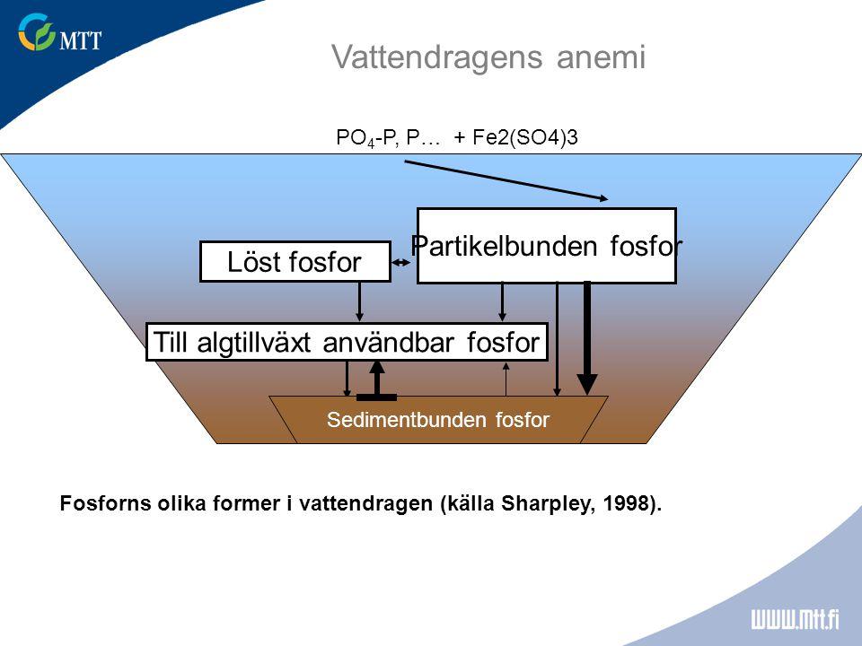 Fosforns olika former i vattendragen (källa Sharpley, 1998).