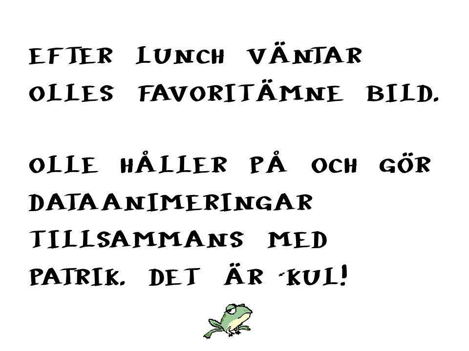 EFTER LUNCH VÄNTAR OLLES FAVORITÄMNE BILD.