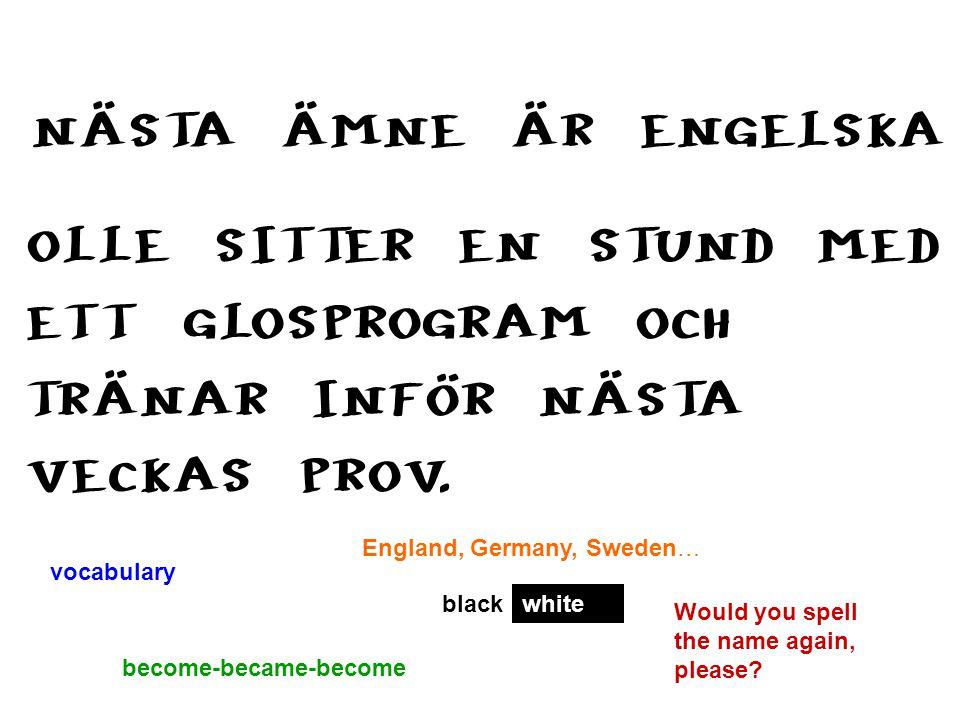 NÄSTA ÄMNE ÄR ENGELSKA OLLE SITTER EN STUND MED ETT GLOSPROGRAM OCH TRÄNAR INFÖR NÄSTA VECKAS PROV. vocabulary become-became-become blackwhite Would y