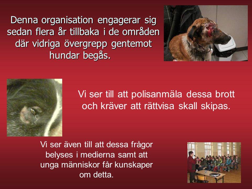 Denna organisation engagerar sig sedan flera år tillbaka i de områden där vidriga övergrepp gentemot hundar begås. Denna organisation engagerar sig se