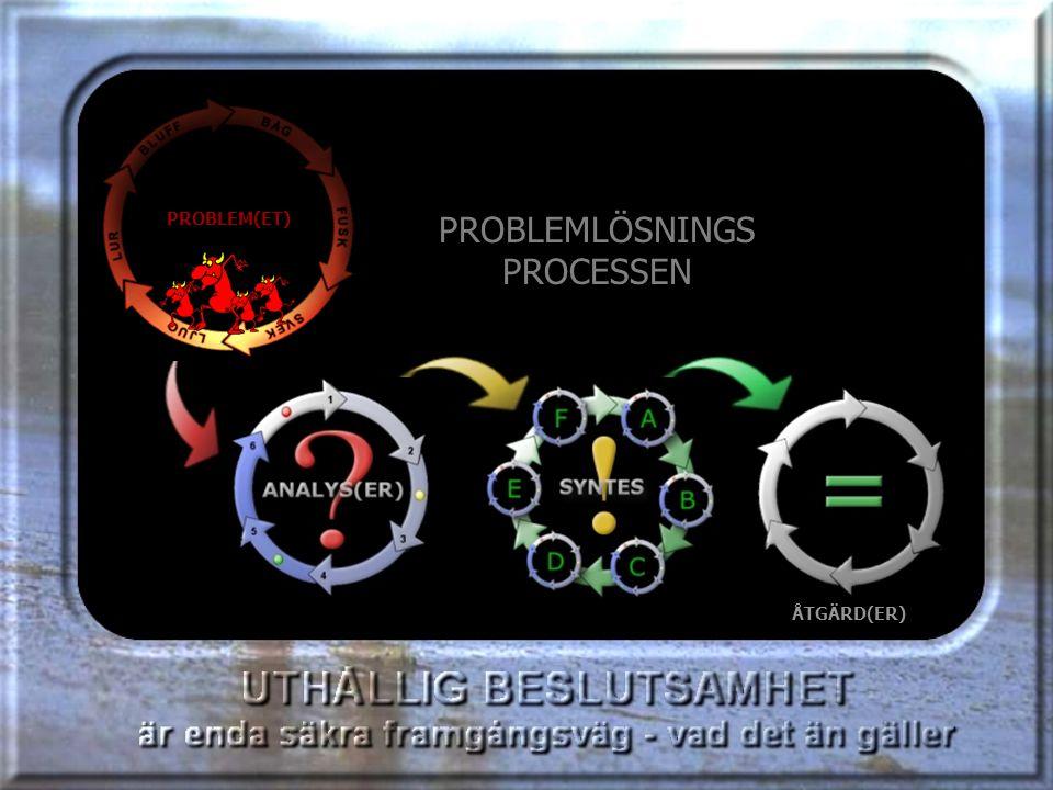 PROBLEMLÖSNINGS PROCESSEN PROBLEM(ET)