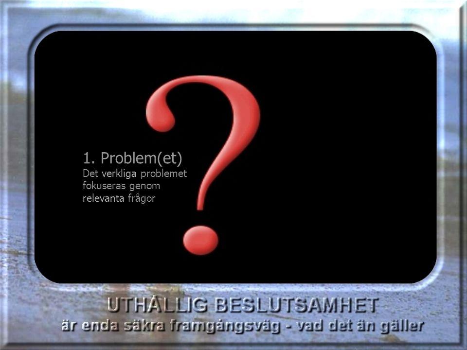 1. Problem(et) Det verkliga problemet fokuseras genom relevanta frågor 1.