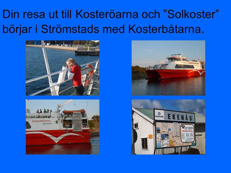 """Din resa ut till Kosteröarna och """"Solkoster"""" börjar i Strömstads med Kosterbåtarna."""