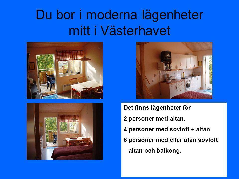 Du bor i moderna lägenheter mitt i Västerhavet Det finns lägenheter för 2 personer med altan. 4 personer med sovloft + altan 6 personer med eller utan