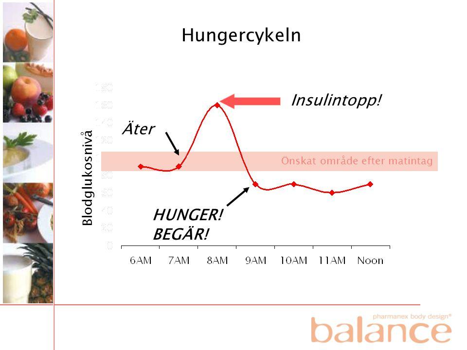 HUNGER! BEGÄR! Äter Insulintopp! Hungercykeln Blodglukosnivå Önskat område efter matintag