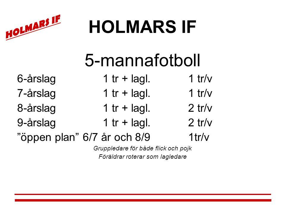 """HOLMARS IF 5-mannafotboll 6-årslag1 tr + lagl.1 tr/v 7-årslag1 tr + lagl.1 tr/v 8-årslag1 tr + lagl.2 tr/v 9-årslag1 tr + lagl.2 tr/v """"öppen plan"""" 6/7"""