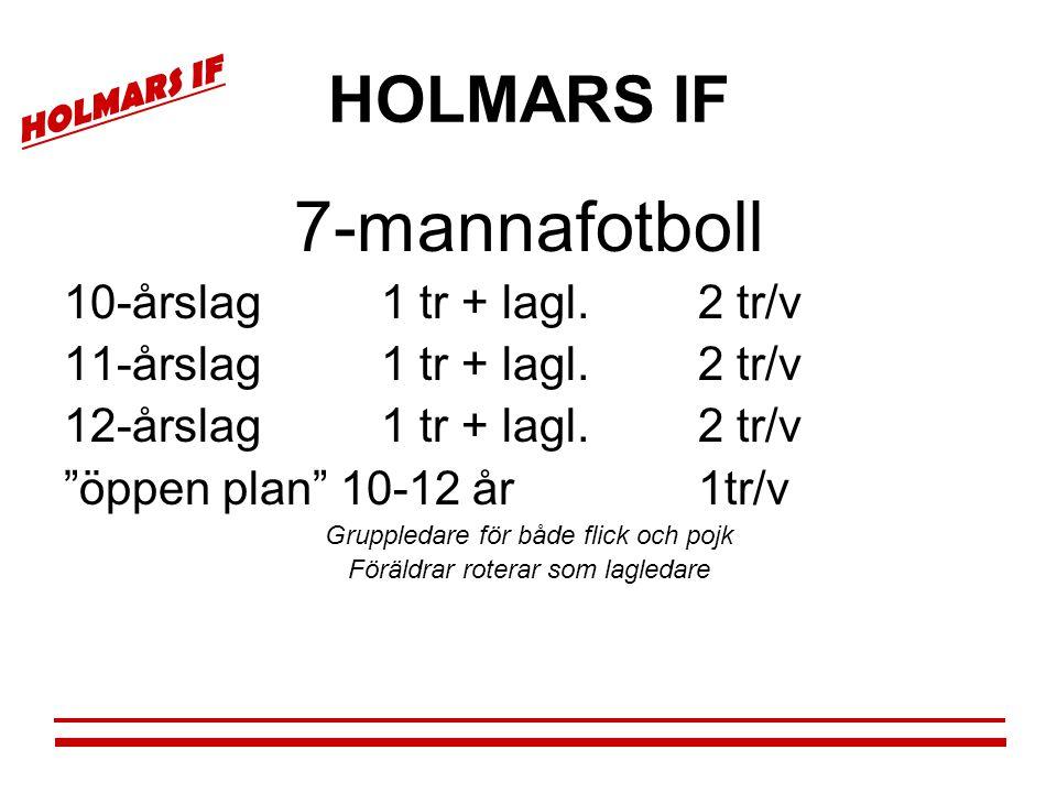 """HOLMARS IF 7-mannafotboll 10-årslag1 tr + lagl.2 tr/v 11-årslag1 tr + lagl.2 tr/v 12-årslag1 tr + lagl.2 tr/v """"öppen plan"""" 10-12 år1tr/v Gruppledare f"""