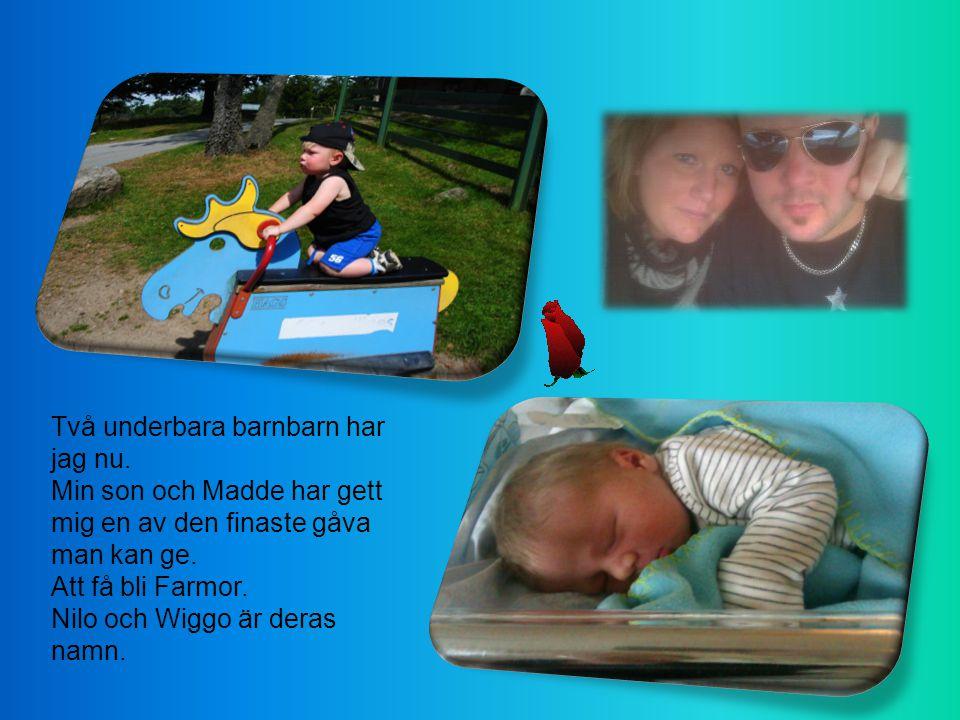 Hade härliga dagar i Hemmeslöv denna sommar.En dagspromenad i Haväng.