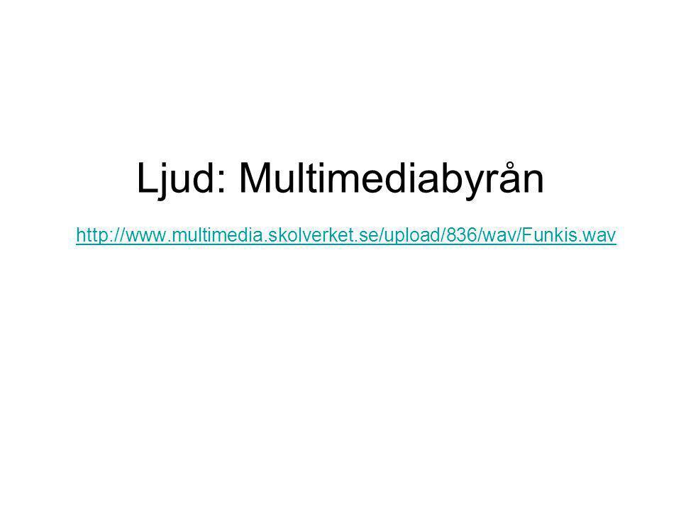 Ljud: Multimediabyrån http://www.multimedia.skolverket.se/upload/836/wav/Funkis.wav http://www.multimedia.skolverket.se/upload/836/wav/Funkis.wav