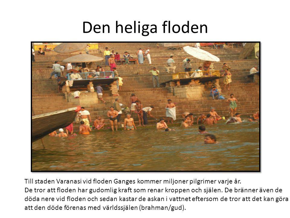 Den heliga floden Till staden Varanasi vid floden Ganges kommer miljoner pilgrimer varje år. De tror att floden har gudomlig kraft som renar kroppen o