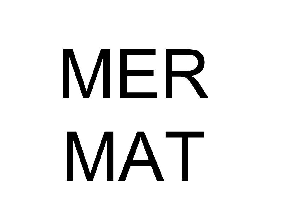 MER MAT