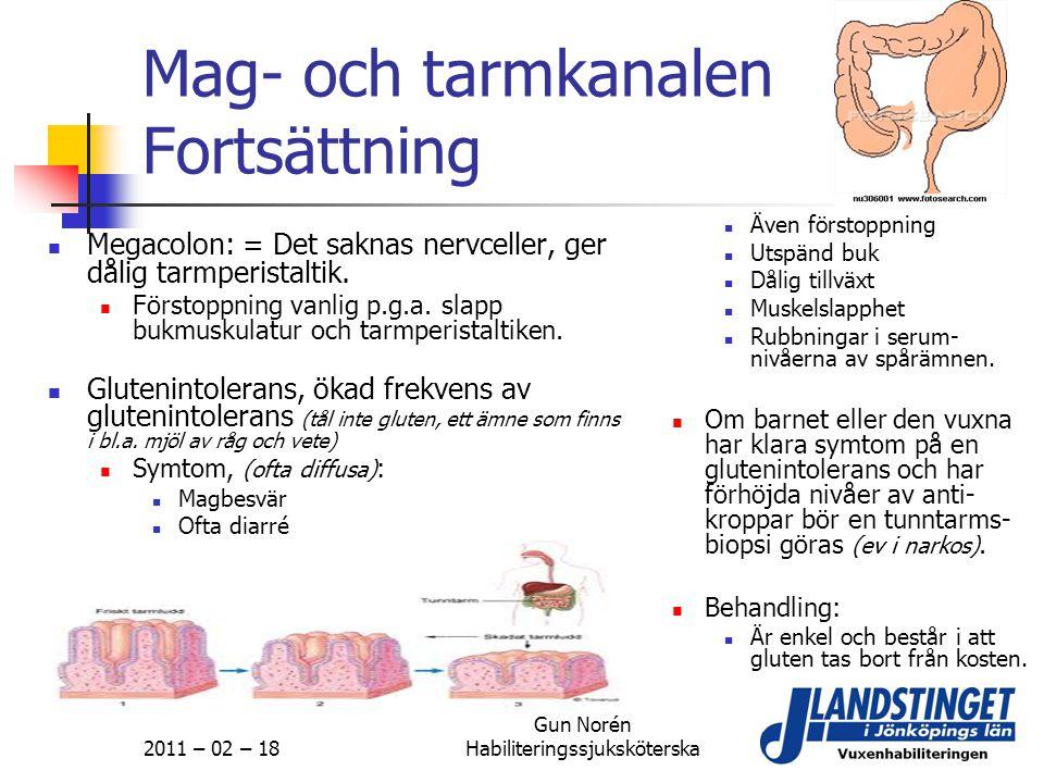 2011 – 02 – 18 Gun Norén Habiliteringssjuksköterska Mag- och tarmkanalen Fortsättning  Megacolon: = Det saknas nervceller, ger dålig tarmperistaltik.