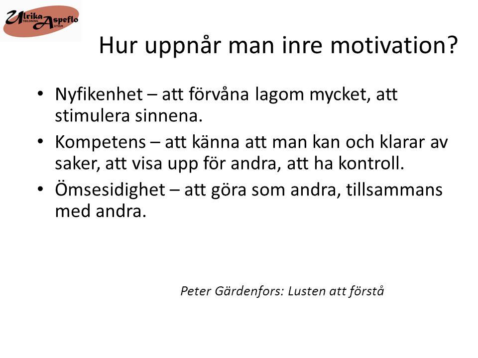 Hur uppnår man inre motivation? • Nyfikenhet – att förvåna lagom mycket, att stimulera sinnena. • Kompetens – att känna att man kan och klarar av sake