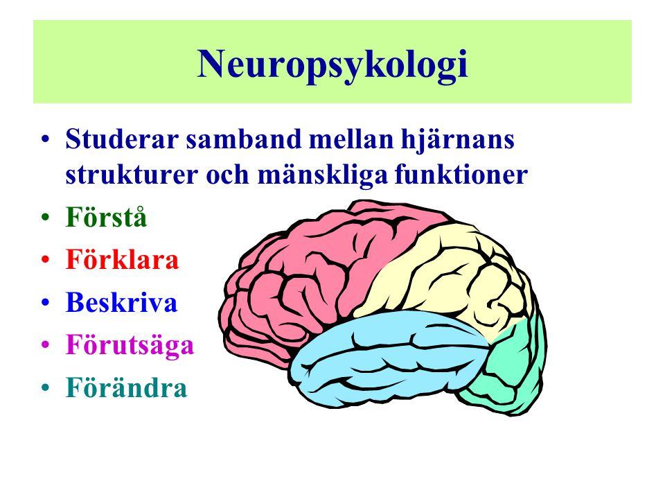 Neuropsykologi •Studerar samband mellan hjärnans strukturer och mänskliga funktioner •Förstå •Förklara •Beskriva •Förutsäga •Förändra