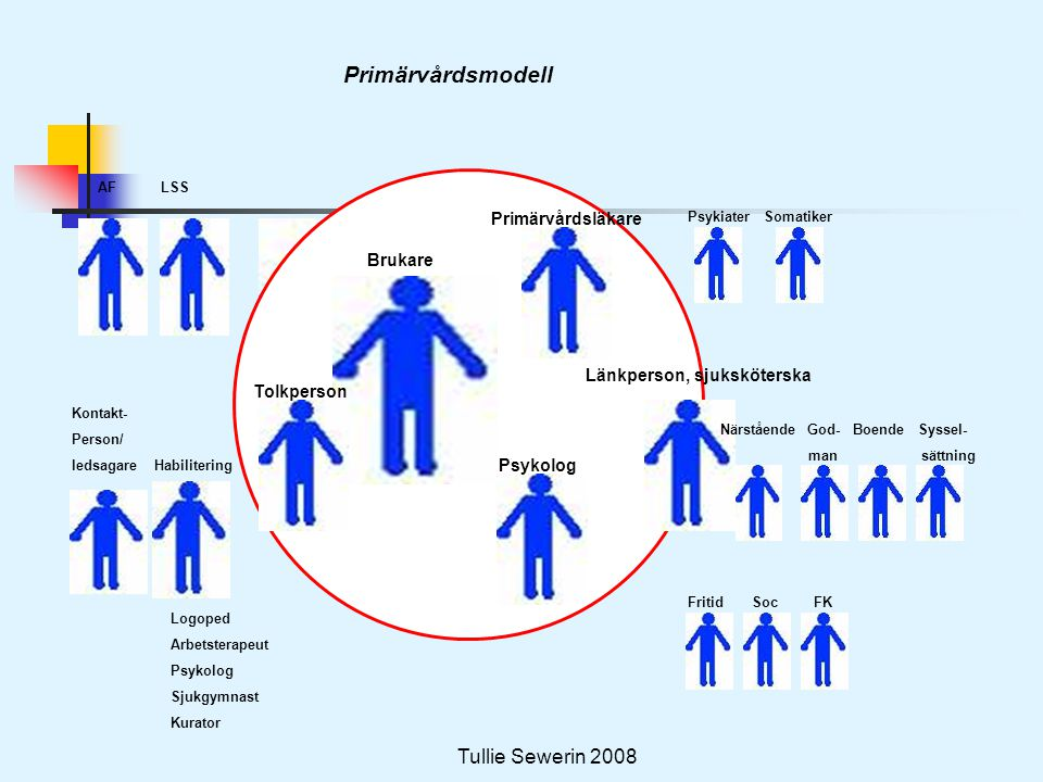 Tullie Sewerin 2008 Primärvårdsmodell AF LSS Kontakt- Person/ ledsagare Habilitering Logoped Arbetsterapeut Psykolog Sjukgymnast Kurator Tolkperson Br