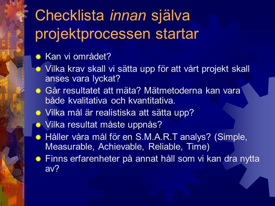 Checklista under själva projektprocessen  Kan projektets målgrupper skaffa sig kännedom om projektet (Tillgänglighet).