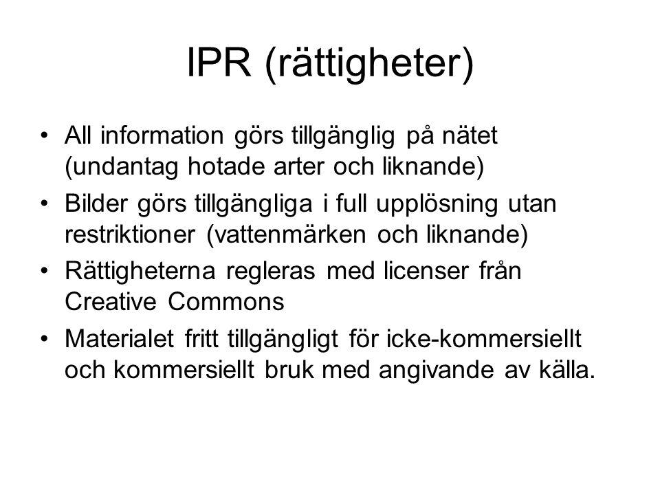 IPR (rättigheter) •All information görs tillgänglig på nätet (undantag hotade arter och liknande) •Bilder görs tillgängliga i full upplösning utan res