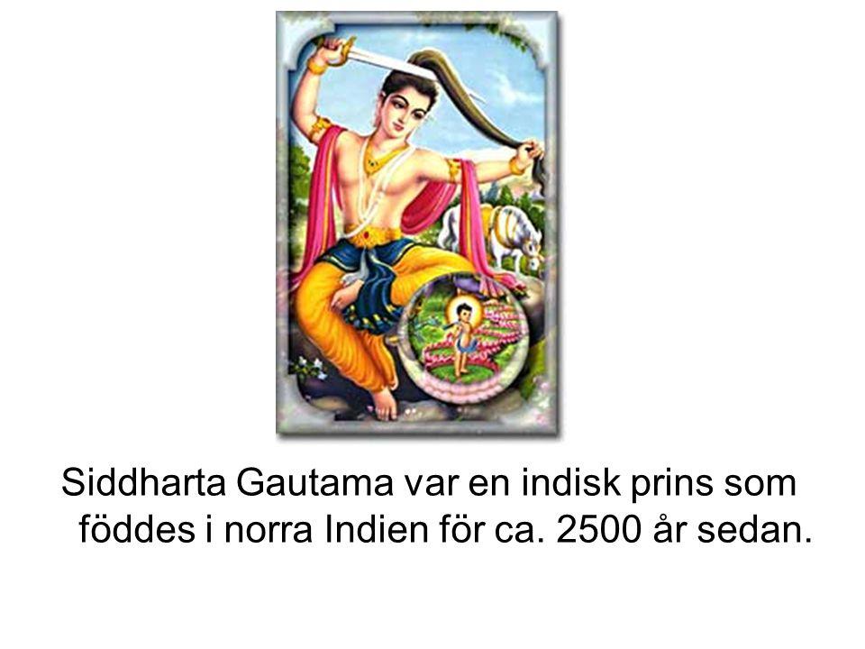 Siddharta Gautama var en indisk prins som föddes i norra Indien för ca. 2500 år sedan.
