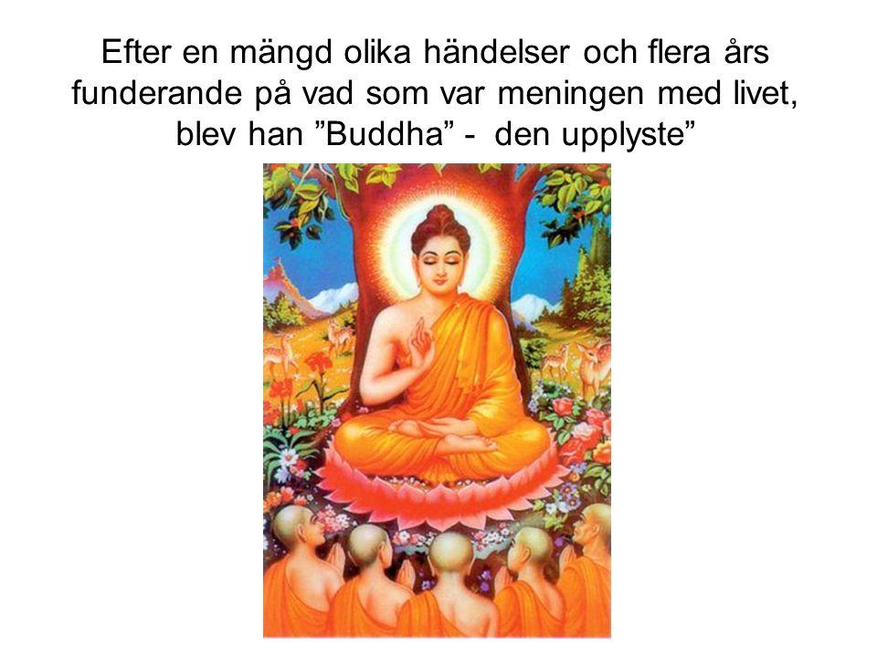 """Efter en mängd olika händelser och flera års funderande på vad som var meningen med livet, blev han """"Buddha"""" - den upplyste"""""""
