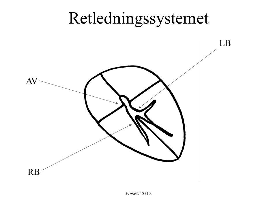 Kesek 2012 Retledningssystemet LB RB AV