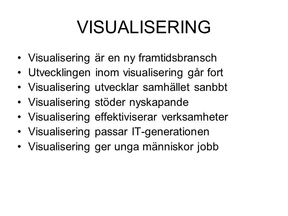 VISUALISERING •Visualisering är en ny framtidsbransch •Utvecklingen inom visualisering går fort •Visualisering utvecklar samhället sanbbt •Visualiseri