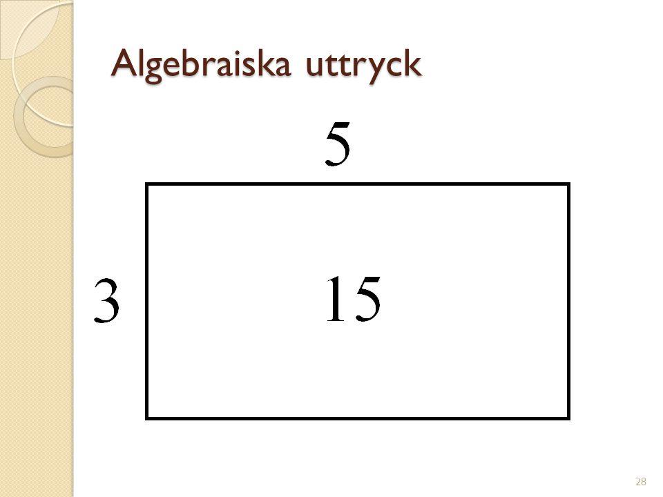 Algebraiska uttryck 29