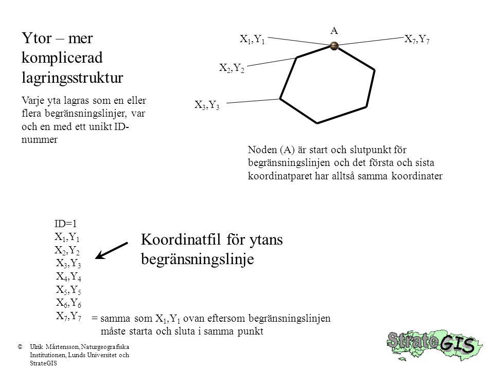 Ytor – mer komplicerad lagringsstruktur Varje yta lagras som en eller flera begränsningslinjer, var och en med ett unikt ID- nummer ID=1 X 1,Y 1 X 2,Y