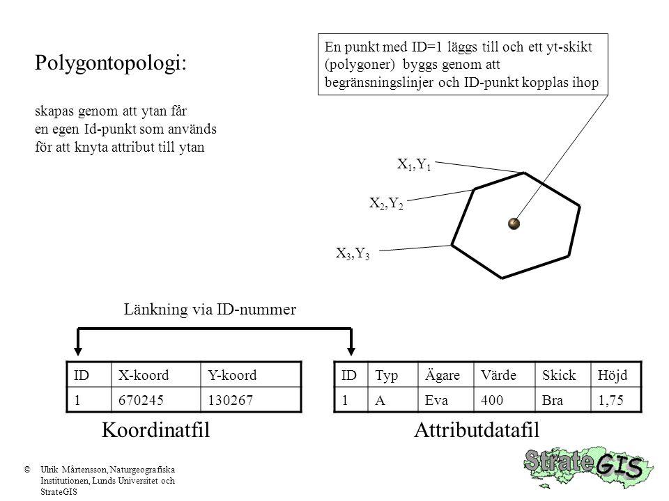 Polygontopologi: skapas genom att ytan får en egen Id-punkt som används för att knyta attribut till ytan X 1,Y 1 X 2,Y 2 X 3,Y 3 IDTypÄgareVärdeSkickH