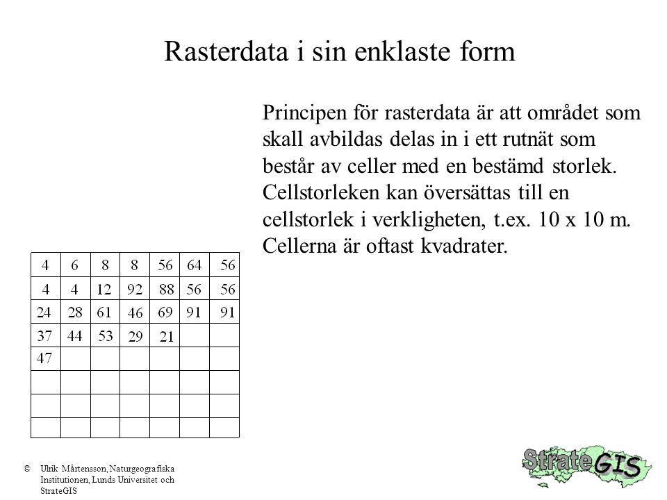 Rasterdata i sin enklaste form Principen för rasterdata är att området som skall avbildas delas in i ett rutnät som består av celler med en bestämd st