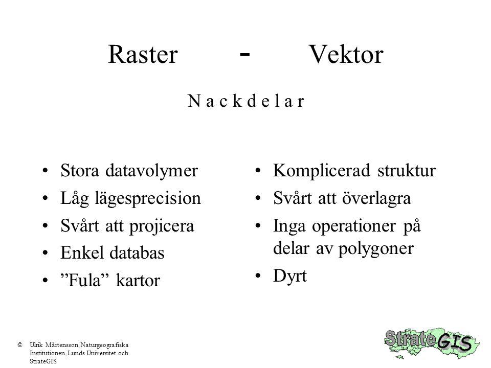 """Raster - Vektor •Stora datavolymer •Låg lägesprecision •Svårt att projicera •Enkel databas •""""Fula"""" kartor •Komplicerad struktur •Svårt att överlagra •"""
