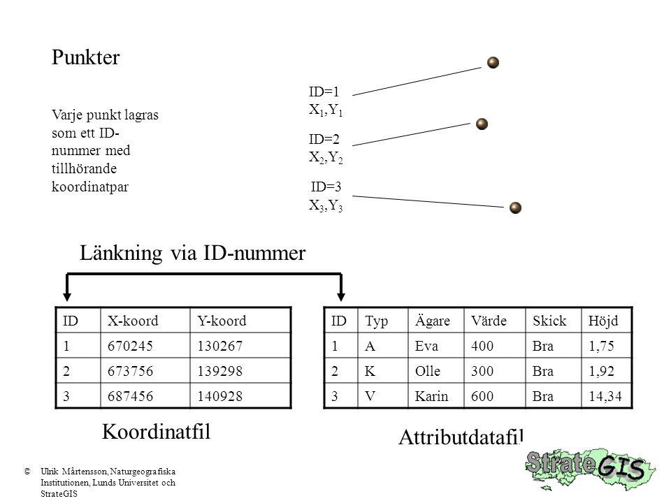 Punkter Varje punkt lagras som ett ID- nummer med tillhörande koordinatpar ID=1 X 1,Y 1 ID=2 X 2,Y 2 ID=3 X 3,Y 3 IDTypÄgareVärdeSkickHöjd 1AEva400Bra