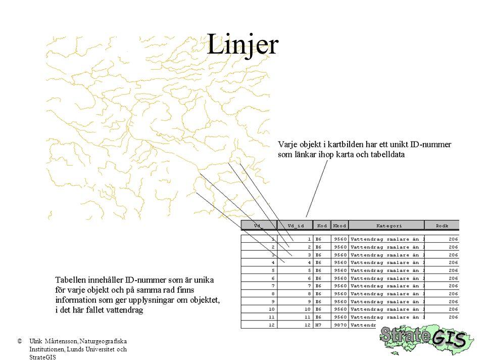 Linjer Varje linje lagras som ett ID- Nummer med antal tillhörande koordinatpar (ett för varje brytpunkt) med start och stopp koordinater som ofta kallas noder ID=1 är alla koordinatpar mellan noderna (A) och (B) ID=1 X 1,Y 1 X 2,Y 2 X 3,Y 3 X 4,Y 4 X 5,Y 5 X 6,Y 6 X 7,Y 7 X 8,Y 8 ID=2 X 1,Y 1 X 2,Y 2 X 3,Y 3 X 4,Y 4 = samma som X 8,Y 8 ovan eftersom linjerna delar en nod X 1,Y 1 X 2,Y 2 X 8,Y 8 X 3,Y 3 A B C ID=2 är alla koordinatpar mellan noderna (B) och (C) Koordinatfil, koppling till attribut sker via Id-nummer ©Ulrik Mårtensson, Naturgeografiska Institutionen, Lunds Universitet och StrateGIS