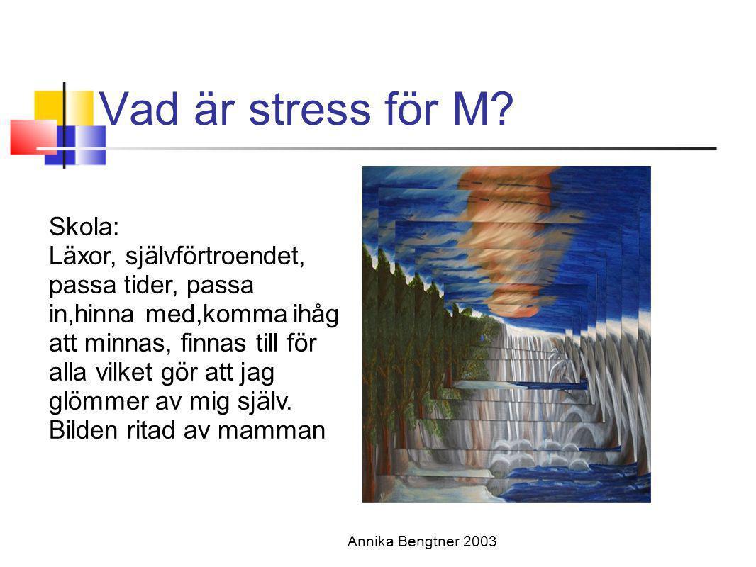 Vad är stress för M? Annika Bengtner 2003 Skola: Läxor, självförtroendet, passa tider, passa in,hinna med,komma ihåg att minnas, finnas till för alla