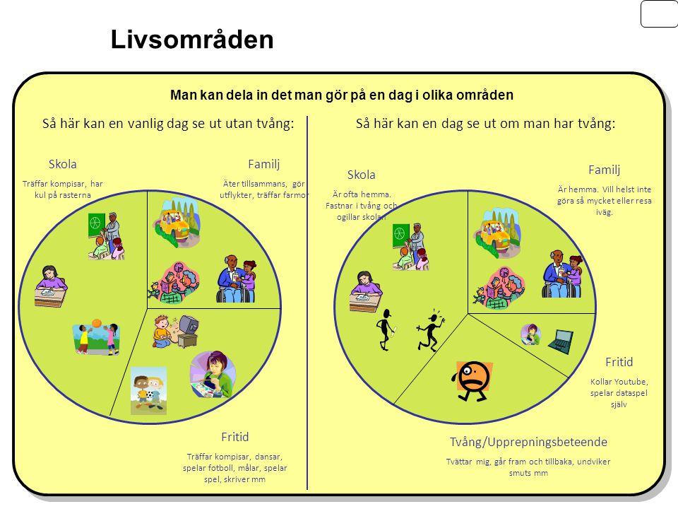 Fabian Lenhard, BUP Signal, Barn Internet Projektet BIP Livsområden Skola Träffar kompisar, har kul på rasterna Familj Äter tillsammans, gör utflykter