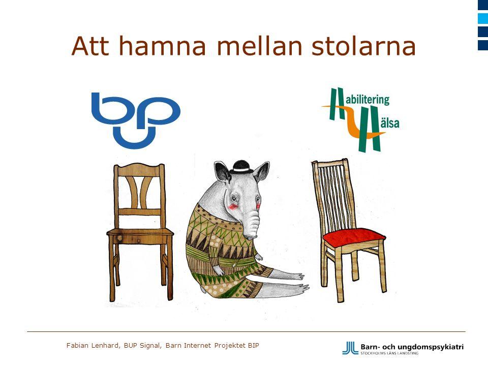 Fabian Lenhard, BUP Signal, Barn Internet Projektet BIP Att hamna mellan stolarna