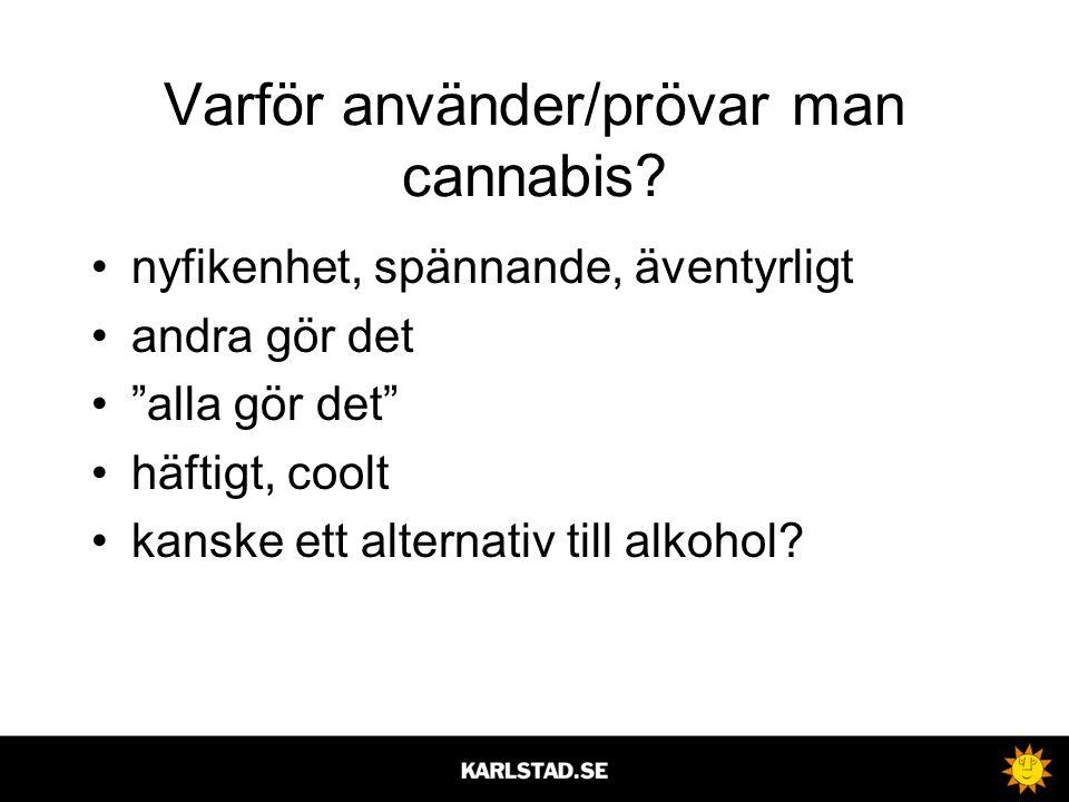 """Varför använder/prövar man cannabis? •nyfikenhet, spännande, äventyrligt •andra gör det •""""alla gör det"""" •häftigt, coolt •kanske ett alternativ till al"""