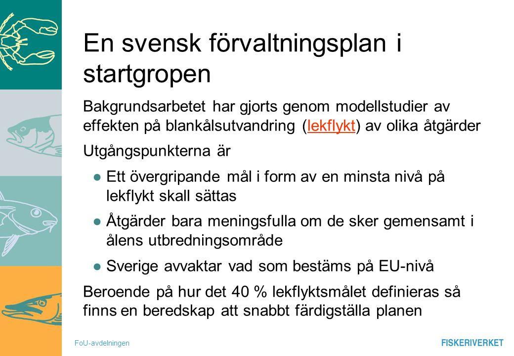 FoU-avdelningen En svensk förvaltningsplan i startgropen Bakgrundsarbetet har gjorts genom modellstudier av effekten på blankålsutvandring (lekflykt)