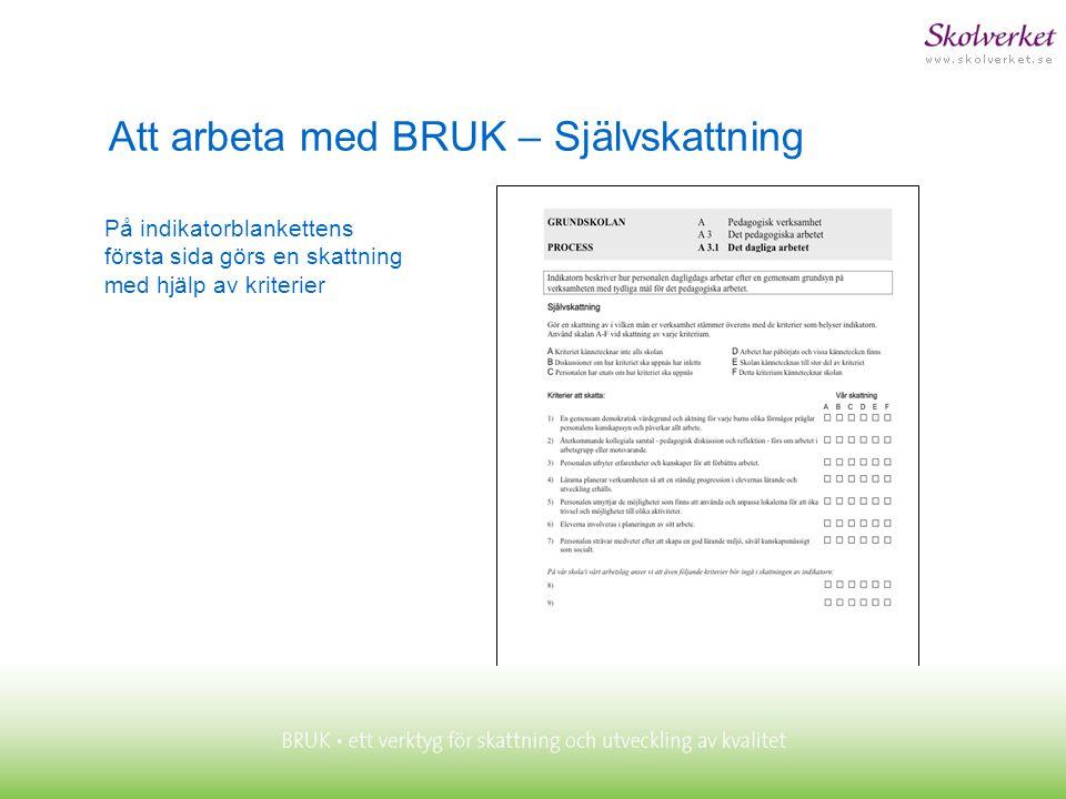 Att arbeta med BRUK – Självskattning På indikatorblankettens första sida görs en skattning med hjälp av kriterier