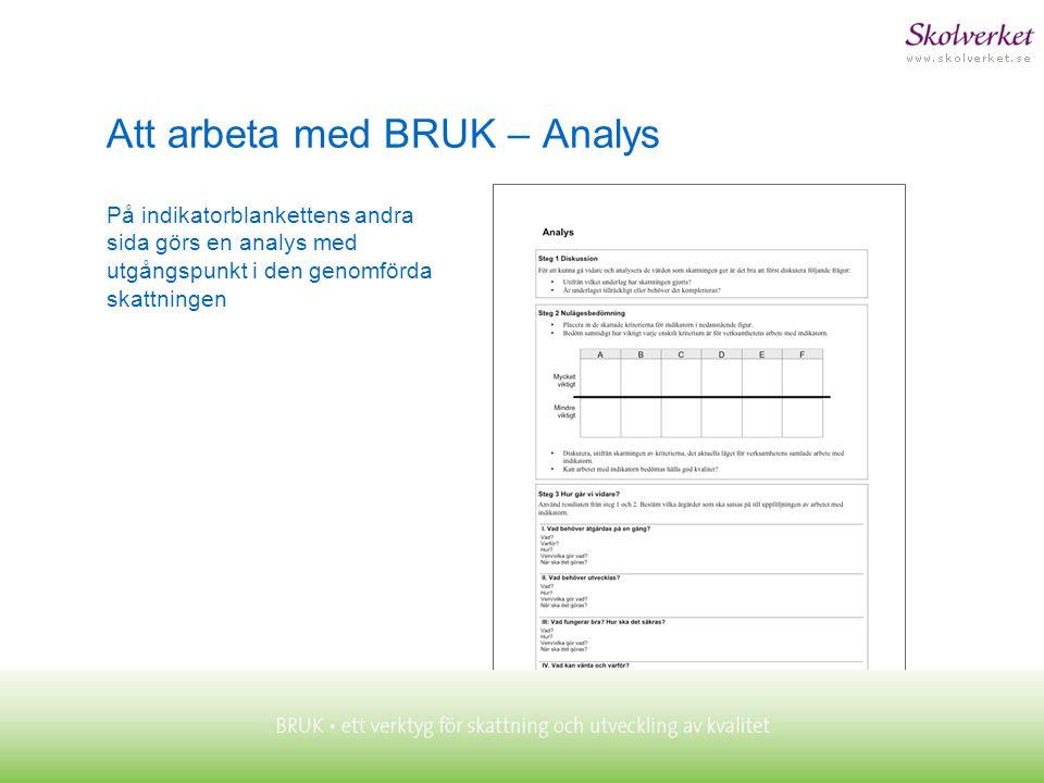 Att arbeta med BRUK – Analys På indikatorblankettens andra sida görs en analys med utgångspunkt i den genomförda skattningen