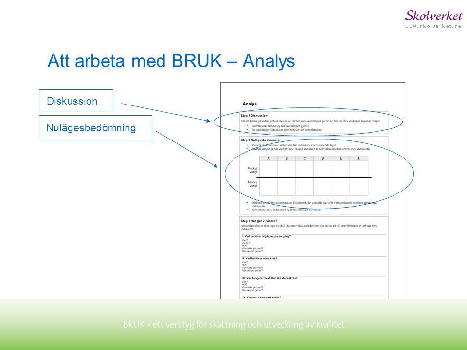 Nulägesbedömning Diskussion Att arbeta med BRUK – Analys