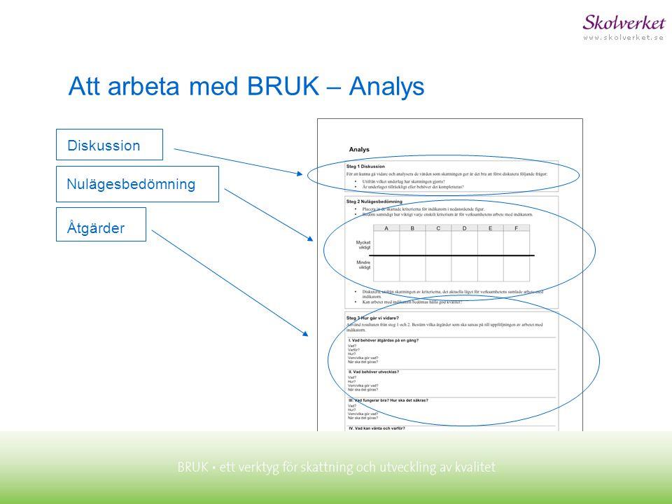 Åtgärder Att arbeta med BRUK – Analys Nulägesbedömning Diskussion