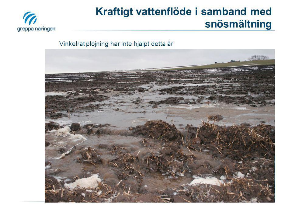 Kraftigt vattenflöde i samband med snösmältning Vinkelrät plöjning har inte hjälpt detta år