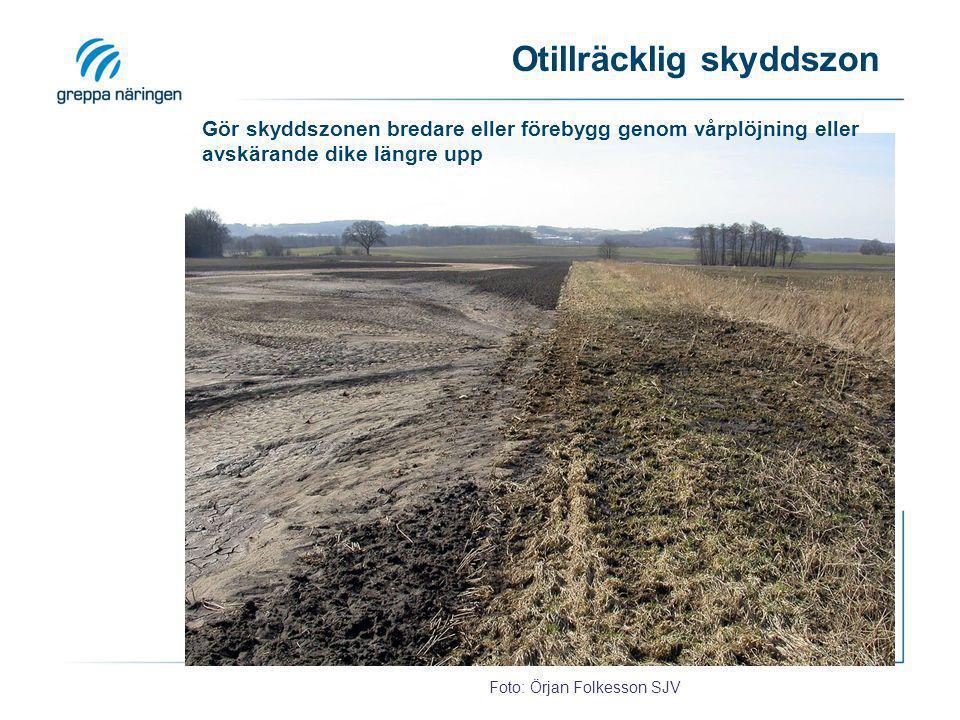 Otillräcklig skyddszon Foto: Örjan Folkesson SJV Gör skyddszonen bredare eller förebygg genom vårplöjning eller avskärande dike längre upp