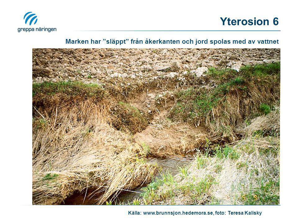 """Marken har """"släppt"""" från åkerkanten och jord spolas med av vattnet Källa: www.brunnsjon.hedemora.se, foto: Teresa Kalisky Yterosion 6"""